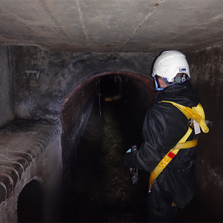 Trunk Sewer Surveys